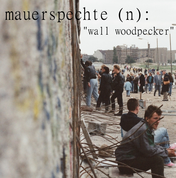 Mauerspechte at the Berlin Wall